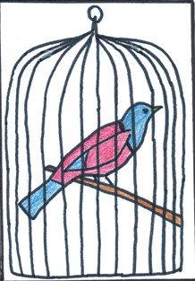 cage-oiseau-4