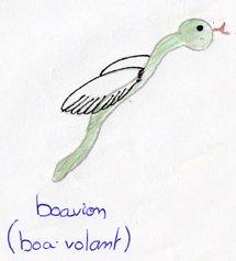 boavion-Amelie