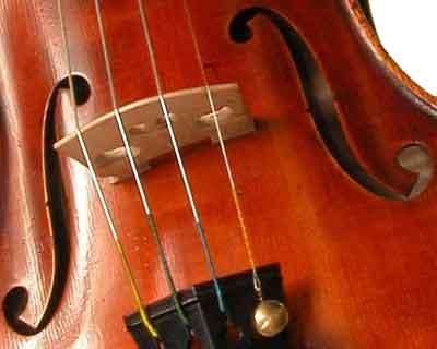 morgan-violon