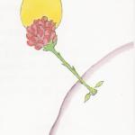 rose-du-p.P.-150x150 dans RECITS