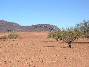 Paysage desertique